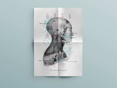 Poster/Afiche desplegable lettering type art illustrator minimal animation design typography vector illustration