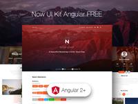 Now UI Kit Angular FREE ❤️