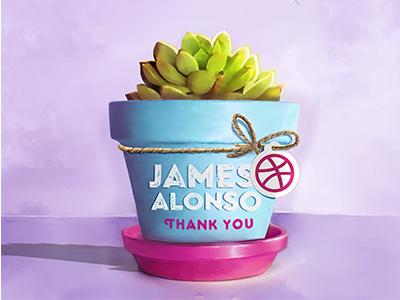 thanks invite  bassol pao illustration shot first alonso james invite thanks