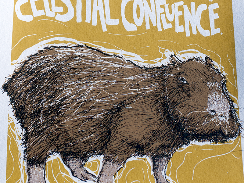 C is for Capybara Print by Chris Adams on Dribbble