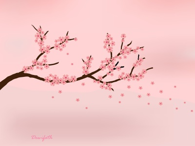 cherry blossom adobe illustrator flowers illustration