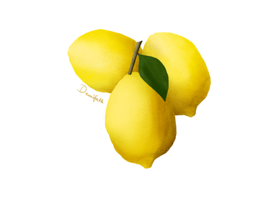 Lemon procreate art procreate fruit illustration illustration