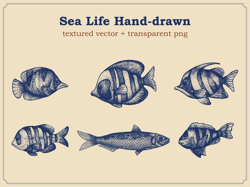 Fish Hand Drawn Stipple fresh drawing decoration underwater restaurant icon nature salmon doodle design animal drawn seafood food ocean marine sketch hand sea fish