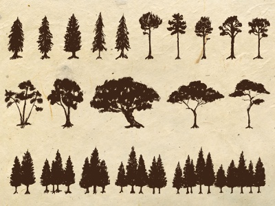 Hand Drawn Trees Elements nature vintage logo illustraion elements trees hand drawn drawing artwork illustration
