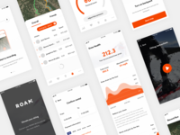 Roam Robotics mobile UI 📱