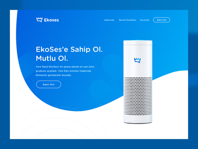 Landing Page - Ekoses user experience user interface interior ux ui web landing page