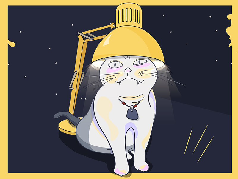 Crazy Cat - 焗油猫 light lamp table ui life illustration icon cat ai