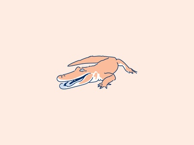 Florida Man — Everglades illustration monoline shepherd florida man florida alligator gator