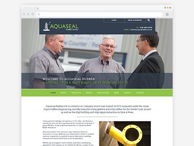 Aquaseal Website website ui ux user interface design responsive