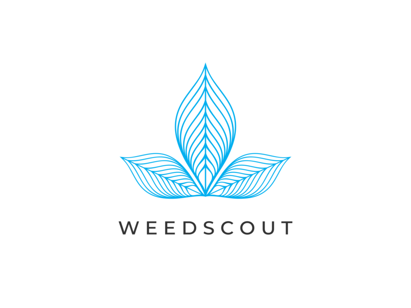 weedscout medical company brand branding symbol sign vector logo illustraion design leaf abstract