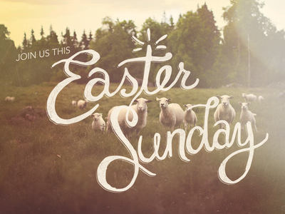 Easter Sunday  hand lettering script typography easter church lambs