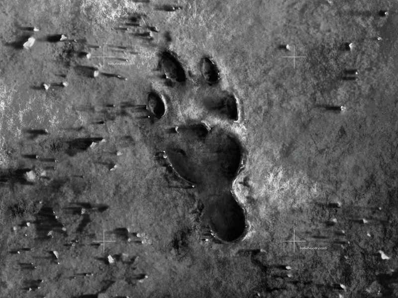 Footprints on the Moon procreate art illustration art typedesign kobufoundry graphic design rabbit moon tsuku typeface typogaphy footprint procreate illustration