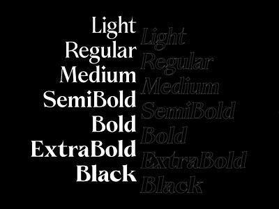 Taiyo™ Serif - weights serif typeface serif fonts font design elegant font seriff serif font type kobufoundry graphicdesign typogaphy typeface typedesign