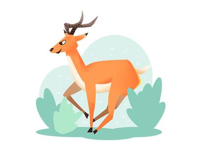 奔跑的羚羊