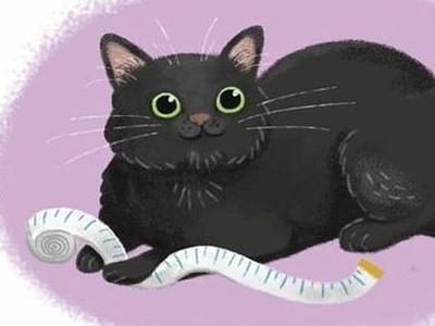 Pet portrait commission meow kitten kitty cat pet owner lover animal lover animal pets portrait pet commission