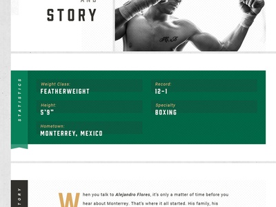 Fighter Profile split dividers sections borders grid contrast gold green black and white theme mixed martial arts mma history statistics halftone texture white space template