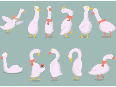Cartoon Duck Characters Illustration flying white bundle love animal vector illustration character duck cartoon