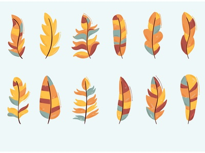 Feather Collection Illustration cute design boho bundle cartoon colorful bird vectr illustration feather
