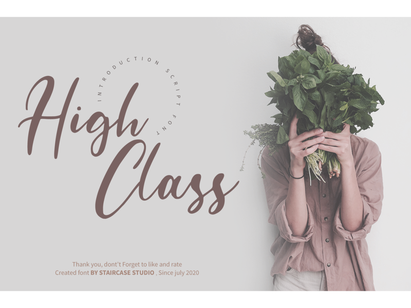 High Class logotype brand landmark invitation wedding branding fonts font script high class