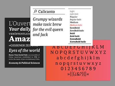 Calicanto Typeface editorial design books serif typeface serif font typedesign typeface typography graphicdesign design