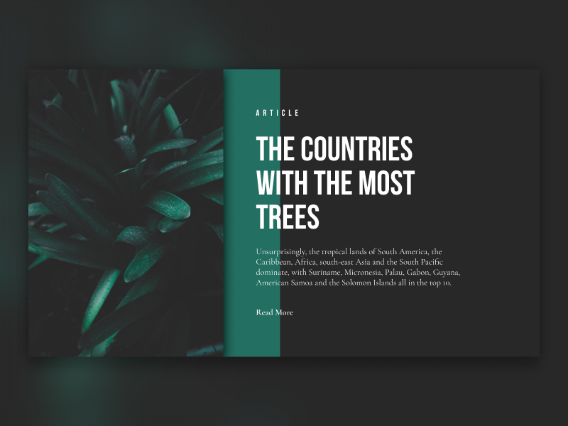 GREEN sketchapp everyday experience interface web ui minimal article green clean app nature
