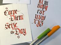 Carpe Diem, Seize the Day Card
