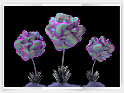 flowers branding minimalism flowers illustraion cinema4d octane design illustration 3d