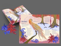 illustration for a magazine bookillustration typogaphy editorial childrens book graphicdesign illustration magazine color children