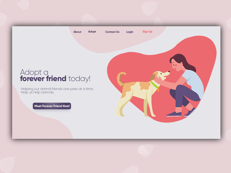Pet Adoption Web Page Design