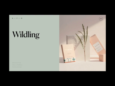 Kati Forner Featured Projects Animation project branding design motion video typography promo interface animation website web ux ui