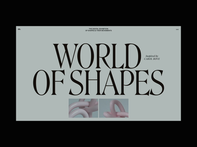 World of Shapes Animation with 3D objects 3d motion interaction typography promo interface animation website video web ux ui