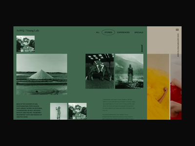 Dribbble a wq young lab stories hover 09.09.18