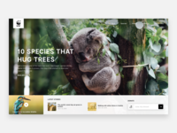World Wide Fund for Nature/WWF