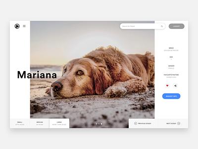Dog/Puppy Adoption unsplash ux web design ui header hero puppy adoption dog adoption puppy dog puppies dogs