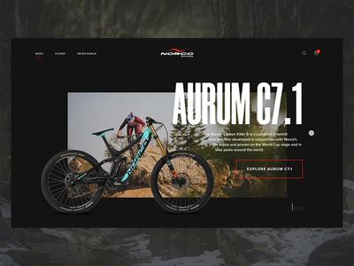 Norco Website Concept design xd after effects website web design animation ui
