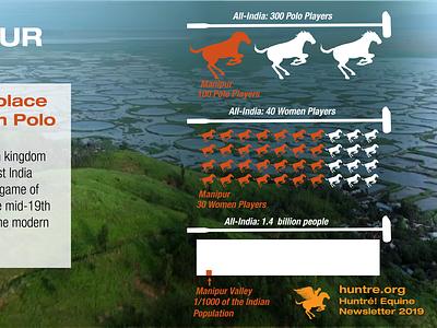 Huntre Equine Newsletter Infographic infographics illustration