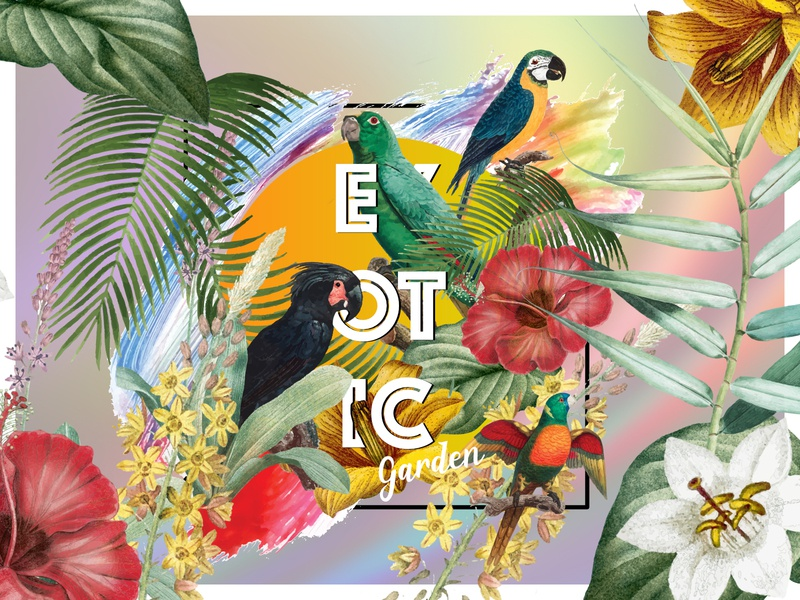 Exotic 'Virtual' Garden | Tropical Vibes dribbleweeklywarmup vector digital art designer design weekly challenge tropical poster graphic design poster design weekly warm-up weeklywarmup