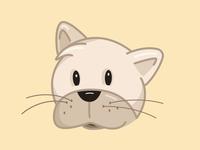 Siamise cat