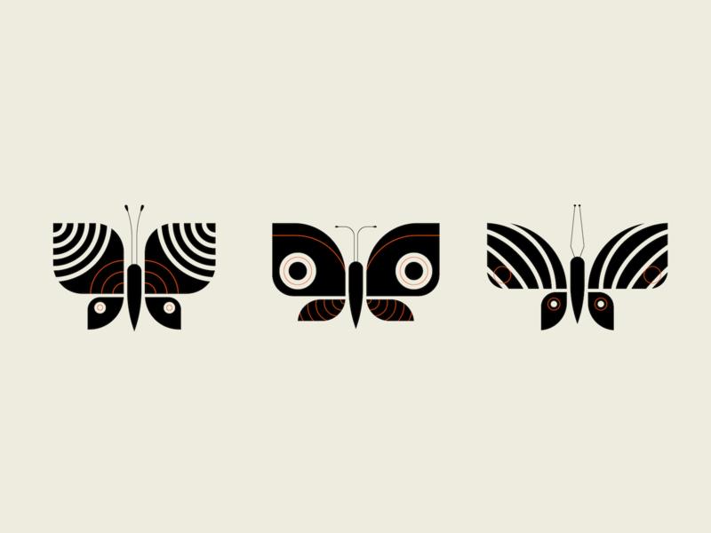 Butterflies wings wing pattern geometric butterflies butterfly vector illustration