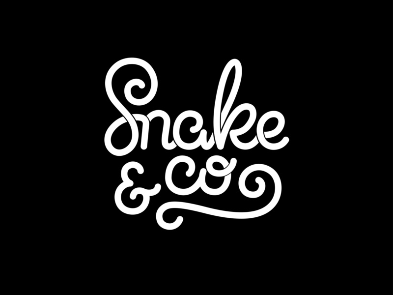 "Lettering logo ""Snake & Co"" vector ipad lettering hand drawn calligraphy logo design typography lettering"