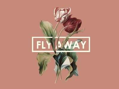 FLY AWAY! icon typography adobe illustrator designer graphicdesign design