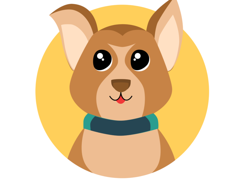 """Logo and icons for the """"Petster""""app"""