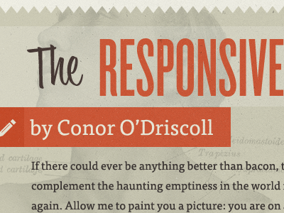 """""""The Responsive"""" knockout bounce script tisa retro blog typography red orange brown beige pretty words"""