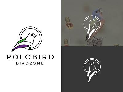 Polobird-Bird logo company logo minimal bird vectbest polobird flat clean illustration branding icon modern logo logo design logo bird logo