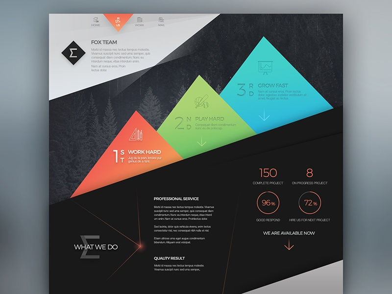 Fox ui ux concept design web web design website dark black grey interface orange