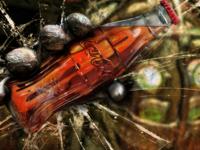 Bio-cola!