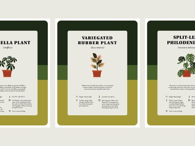 Houseplant Care Prints houseplant green plant design midcentury mod print illustration