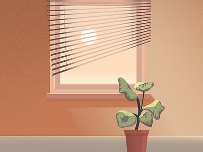 Morning Light plant illustration light window plant illustrator illustration