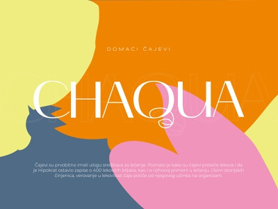 CHAQUA // Brand & Packaging Design illustration typography vector logotype logodesign logo identity icon design branding
