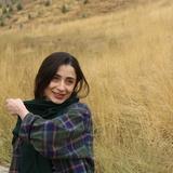 Zahra Arafati